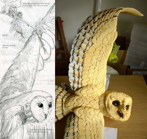 Barn Owl Sketch & Development